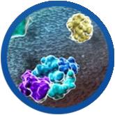 biotherapeutics and novel targets