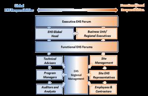 Global EHS Responsibilities