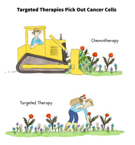 Targeted therapy inhibits the activity of specific genes, proteins or antibodies that have mutated and are helping cancer cells to grow. This inhibition can slow or stop the growth of cancer cells.