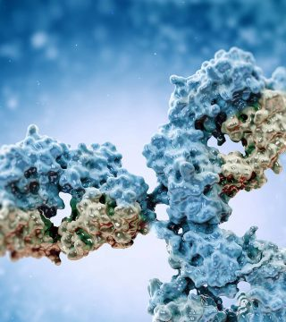Redirecting Immune Cells to Fight Myeloma
