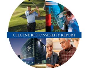 2013 Corporate Report