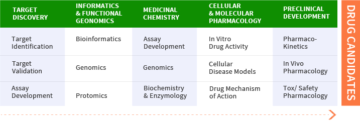 drug discovery essay Detailed stages of drug development discovery product characterization formulation, delivery, packaging development it is critical to begin looking ahead to clinical trials at this phase of the drug development process drug formulation and delivery may be refined continuously until.