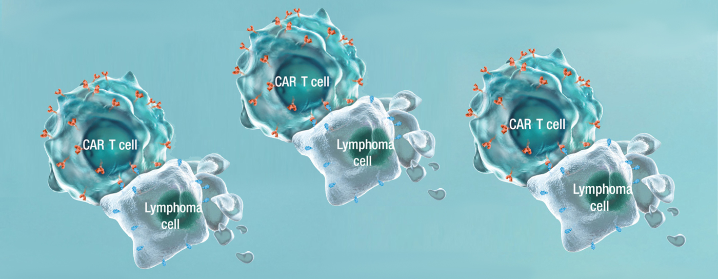Revealing Cancer Cells To The Immune System Celgene