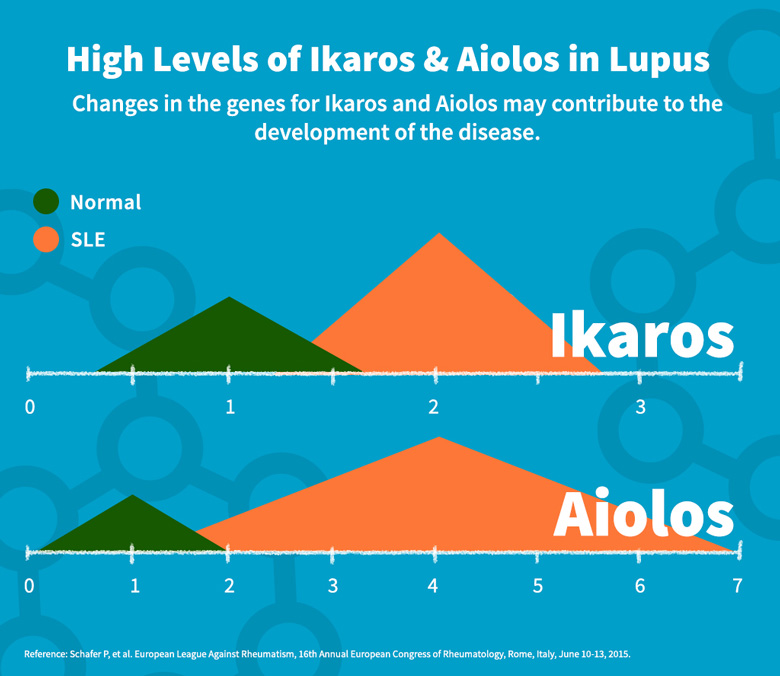 High Levels of Ikaros & Aiolos in Lupus