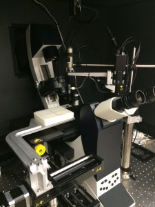 The Quanticel platform leverages a robotic arm manned with a camera to identify a single cell, suck it up and move it into a microwell plate on the left.
