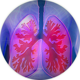 Lung Cancer Image