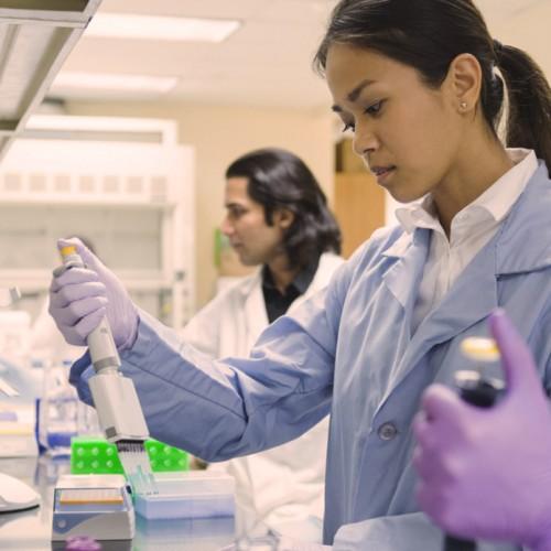 Ampliación de la colaboración entre Celgene Global Health y la DNDi