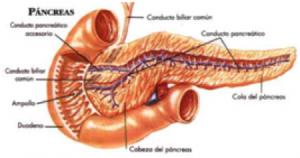Bukspyttkjertelkreft