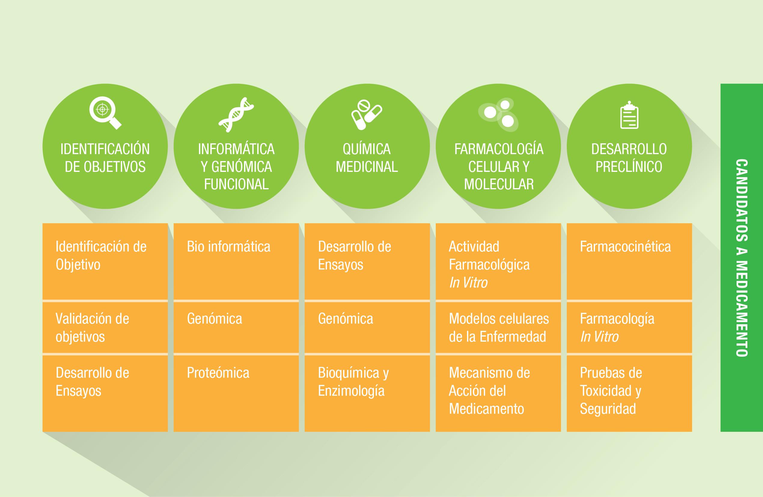 El proceso de descubrimiento de objetivos y medicamentos de Celgene se basa en identificación de objetivos; informática y genómica funcional; química medicinal; farmacología celular y molecular; y desarrollo preclínico.