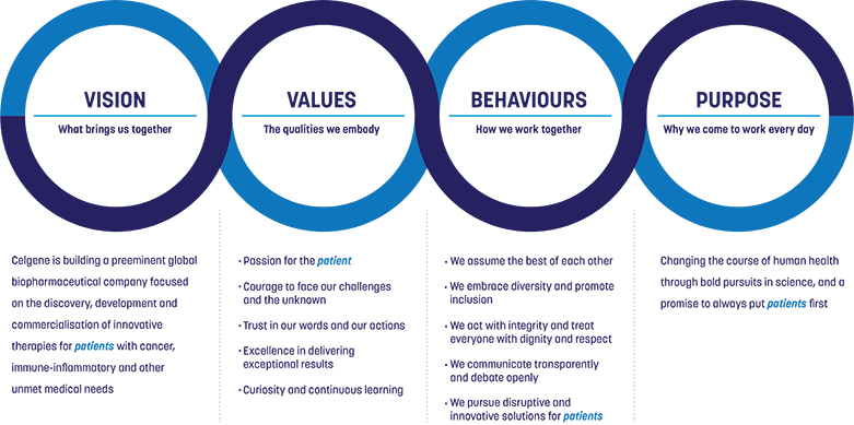 VISION, VALUES, BEHAVIOURS, PURPOSE