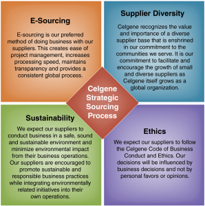 Celgene Strategic Sourcing Process